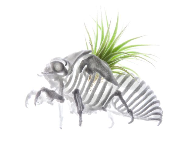 نمونه ای از گلدان پرینت سه بعدی معلق
