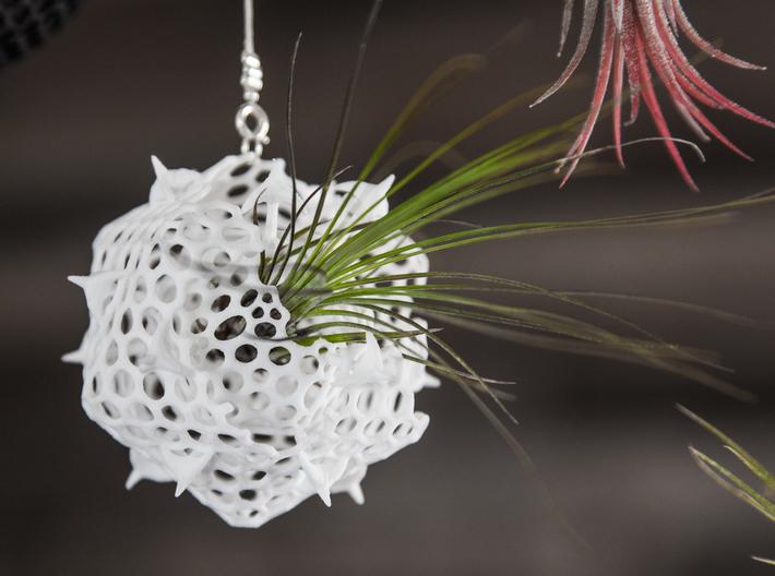 گلدان پرینت سه بعدی معلق پلانکتون