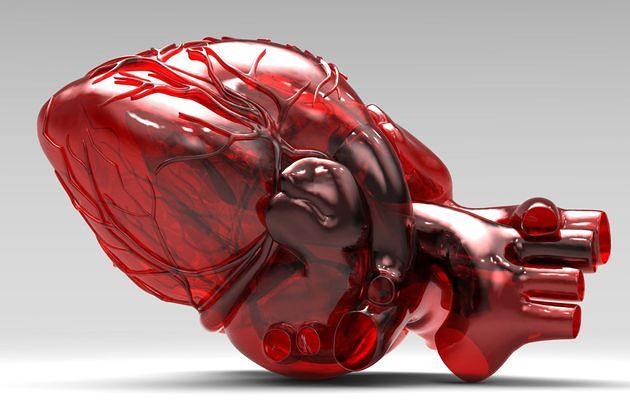 قلب پرینت سه بعدی شده