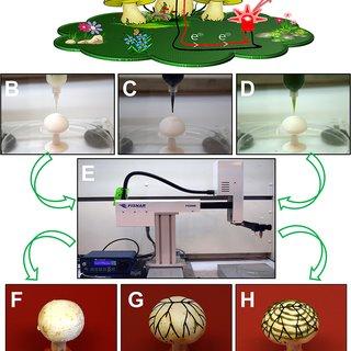 پرینتر سه بعدی و سیانوباکتریها روشی برای تولید برق تحت پوشش قارچ بیونیک